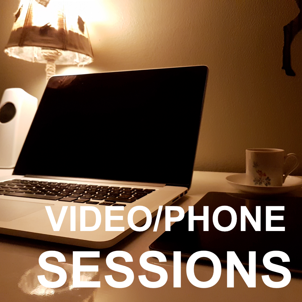Video/Phone Sessions